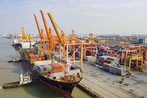 Vận tải biển Việt Nam lo 'thiếu' nhân lực