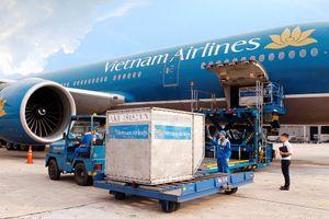 Phi công buôn lậu, lãnh đạo Vietnam Airlines có trách nhiệm gì?