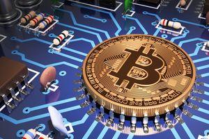 Bitcoin lên xuống thất thường, Bitcoin Cash đang 'chết'