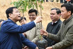 Bộ trưởng NN&PTNT tặng nhãn, mít giống cho hộ dân bị sập nhà vì lũ