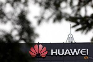 'Canada nên cấm Huawei cung cấp thiết bị mạng 5G'