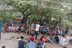 Bắt 119 đối tượng ở trường gà vùng ven Sài Gòn