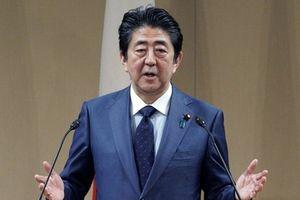 Thủ tướng Nhật Bản Abe đánh giá cao kết quả hợp tác với Nga