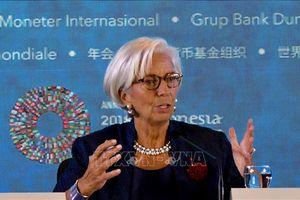 IMF: Brexit không thỏa thuận là 'viễn cảnh tồi tệ nhất'