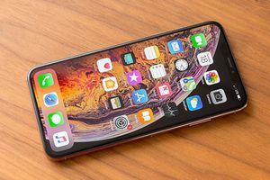 5 tính năng thú vị người dùng nên khám phá trên iPhone