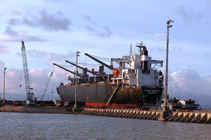 Công ty CP cảng Quy Nhơn ngang nhiên thu phí tàu lai vượt trần