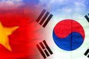 Hữu nghị Việt - Hàn từ góc nhìn thể thao