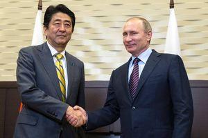 Tổng thống Putin: Giải quyết tranh chấp với Nhật Bản cần sự ủng hộ của công chúng