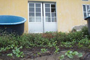 Hoang tàn Trung tâm thực hành nuôi trồng thủy sản trị giá 32 tỉ đồng