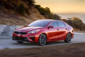 XE HOT QUA ẢNH (23/1): Giá xe VinFast Premium sẽ rẻ hơn đối thủ 20%, 10 xe giá rẻ đáng mua nhất