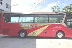 Ngày 25/1, khai trương tuyến xe buýt sân bay Tân Sơn Nhất - Vũng Tàu