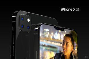 Chiêm ngưỡng iPhone XE: 'kẻ kế nhiệm' của iPhone SE