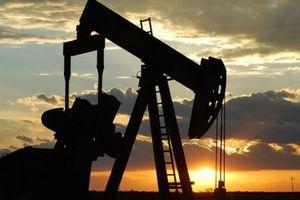 Giá dầu 'bốc hơi' gần 3% vì nỗi lo thừa cung