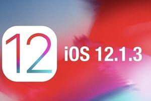 Apple tung ra bản cập nhật iOS đầu tiên của năm 2019