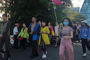Đà Nẵng xử phạt 8 người nước ngoài vi phạm hướng dẫn viên du lịch