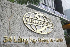 Vinaconex thay Kế toán trưởng sau khi CEO Ecopark về ngồi 'ghế nóng'