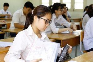 Thi học sinh giỏi quốc gia phải thực chất, tuyển chọn được nhân tài