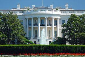 Lộ diện những ứng viên trong cuộc đua vào Nhà Trắng năm 2020