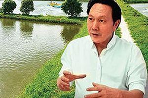 Bất ngờ có lãi nhưng vua cá Hùng Vương vẫn bị kiểm soát