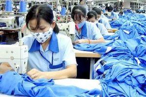 Doanh nghiệp 24h: Lãi lớn năm 2018, Dệt may Thành Công sắp tạm ứng cổ tức 5% bằng tiền