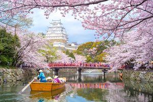 Tắm công cộng, tránh đám đông và tip tiết kiệm khi du lịch Nhật Bản