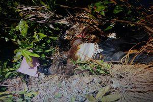 Kon Tum: Hoảng hồn phát hiện thi thể người đàn ông trong rẫy cao su