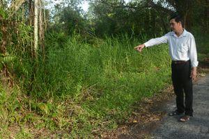 Chuyện 'độc' về heo rừng U Minh Thượng: Bị heo rừng 'nhát ma'