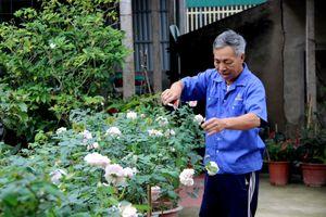 'Hái ra tiền' từ dịch vụ trồng, chăm sóc hoa, cây cảnh dịp Tết
