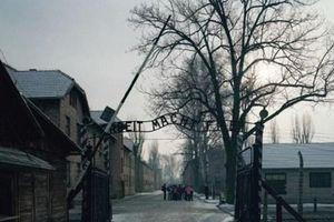 'Cây vĩ cầm Ave Maria' và số phận đứa trẻ ở trại tập trung Auschwitz