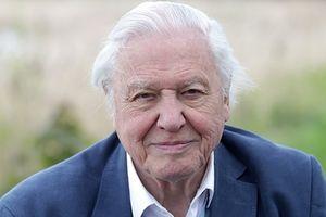 Giải thưởng Crystal 2019, David Attenborough: 'Vườn địa đàng không còn'