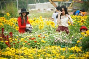 Trăm hoa đua nở ở làng hoa Bà Bộ