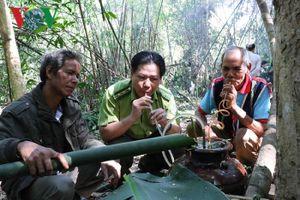 Độc đáo Lễ cúng rừng của người Jarai