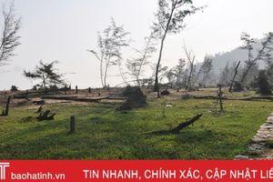 Xác xơ những vùng rừng phòng hộ ven biển Cẩm Xuyên