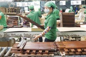 Mở tương lai cho gỗ Việt