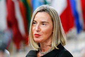 EU khẳng định tầm quan trọng của mối quan hệ đối tác với NATO