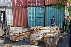 Giấu 1,4 tấn vảy tê tê và hơn 100 kg ngà voi trong container