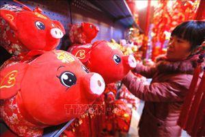 Những hình ảnh ngộ nghĩnh về chú lợn cho Tết Nguyên đán Kỷ Hợi