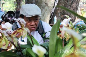 Say đắm ngắm 'guốc hài giai nhân' ở vườn hoa xuân lớn nhất Sài Gòn