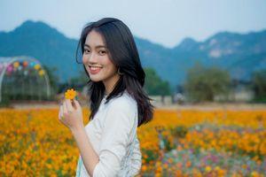 'Bỏ túi' 5 điểm chụp ảnh check - in cứ đứng vào là xinh tại thung lũng hoa xuân Bái Đính