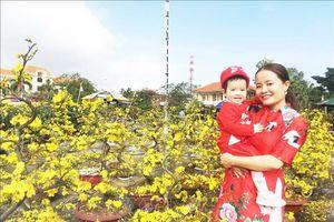 28 tháng Chạp, thị trường hoa xuân Quảng Bình vẫn vắng khách mua