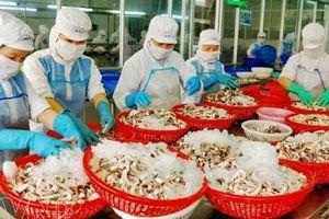 Xây dựng thương hiệu Việt bằng chất lượng sản phẩm