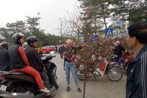 Hà Nội: Chợ hoa Tết nhộn nhịp những ngày cuối năm