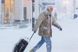 27 người chết trong tuyết trắng trời nước Mỹ