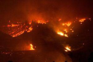Chile tuyên bố 'tình trạng thảm họa' tại 3 khu vực cháy rừng