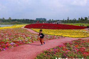 Lạc vào 'thiên đường hoa' ở lễ hội Sắc màu mùa xuân