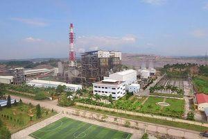 Tổng Công ty Điện lực - TKV: Phấn đấu doanh thu đạt hơn 12 nghìn tỷ đồng