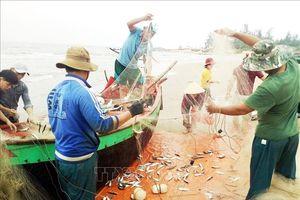 Làng biển Quảng Bình trúng 'lộc' đầu năm