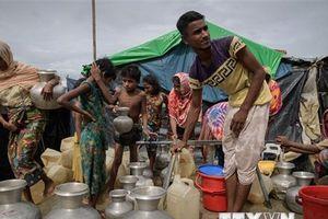 Ấn Độ-Bangladesh bàn cách giải quyết vấn đề người tị nạn Rohingya