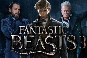 'Fantastic Beasts 3' trì hoãn ngày khởi quay vì lý do 'tạo ra tác phẩm khủng hơn cả 2 phần đầu tiên cộng lại'