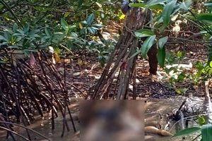 Tá hỏa phát hiện thi thể nằm cạnh bìa rừng, đang phân hủy mạnh
